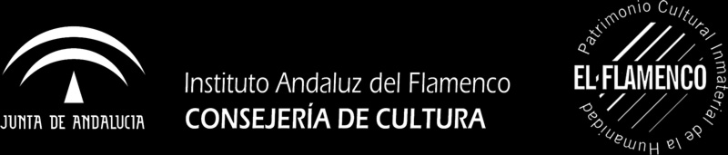 Instituto andaluz del Flamenco
